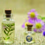 Essential Oils & Hydrosols All Over The World